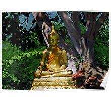 Leafy Buddha Poster