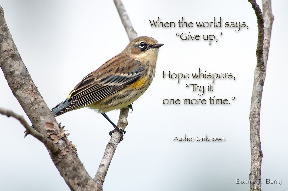 """When the world says, """"Give up"""" . . . by Bonnie T.  Barry"""