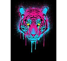CMYK tiger Photographic Print