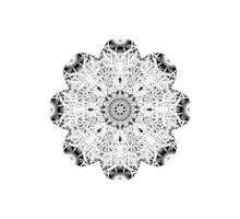 """""""Spirit of India: Fleur"""" in white, grey and black by FireFairy"""
