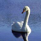 Sadie the Swan by MichelleR