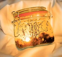 Jar Full of Sunshine by Linda Lees