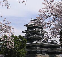 Matsumoto Castle by Christie Harvey
