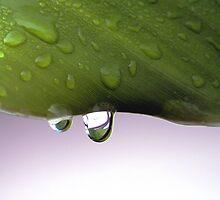 tear drops from heaven by nastruck