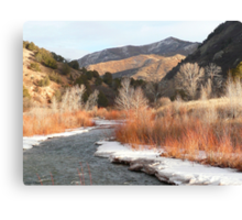 Diamond Fork Thaw Canvas Print