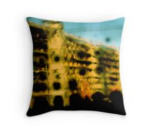 Architectural Growth -¨SALTY HOLE CAM¨ Throw Pillow