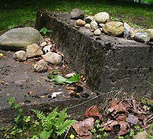 """Stone Steps"" by Jennifer L. Moore"