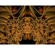 Fractal 21 Photographic Print
