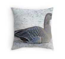 Snow Goose Throw Pillow