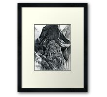 the Mountain of mystery Framed Print