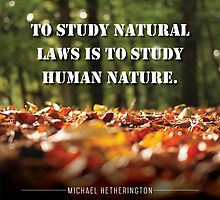 To Study Natural Law by Zenology Arts
