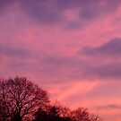 Sunset in New England by Catherine Mardix