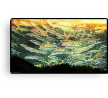 Something Fishy in the Air Canvas Print
