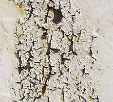 Peeling Paint 2 by rdshaw