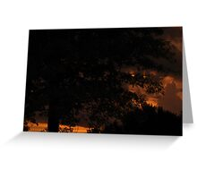 Sunsets and Oak Trees Greeting Card