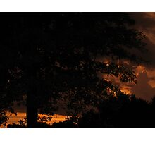 Sunsets and Oak Trees Photographic Print