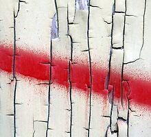Peeling Paint 11 by rdshaw