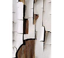 Peeling Paint 14 Photographic Print