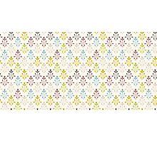 Vintage pattern design.  Photographic Print