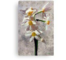 Spring on a Stalk Canvas Print