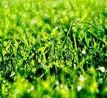 Green Green Grass of Home by Karen  Betts