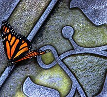 Steel Butterfly by Andy Brooks