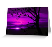 LAST LIGHT (in purple) Greeting Card