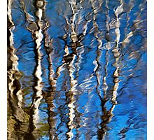 Abstract Aspen Tree Reflection Photographic Print