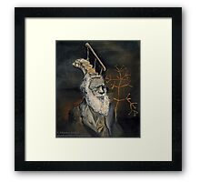 Darwin Took Steps Framed Print