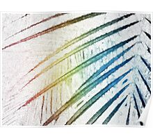 Palm Fronds 1 Poster