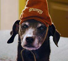 Grumpy Scooby..... by Angela Lance