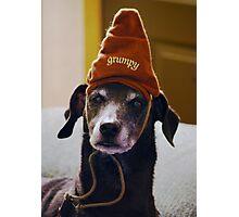 Grumpy Scooby..... Photographic Print