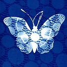 Butterfly in Blue by Lisa Bow