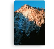 WINTER, NEWFOUND GAP, GREAT SMOKY MOUNTAINS NP Canvas Print