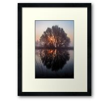 Misty and Magical Framed Print