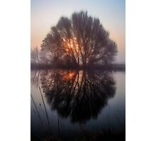Misty and Magical Photographic Print