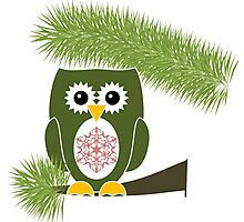 Green Owl with Red Snowflake  Photographic Print