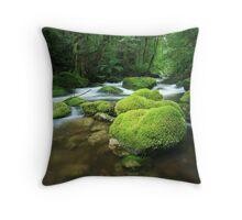 Hidden deep Throw Pillow