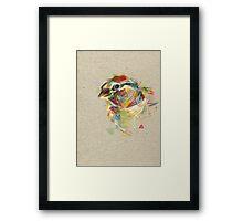 Birdie IV Framed Print