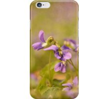 Playful Wild Violets iPhone Case/Skin