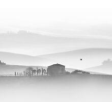 Tuscan Morning by ksegev