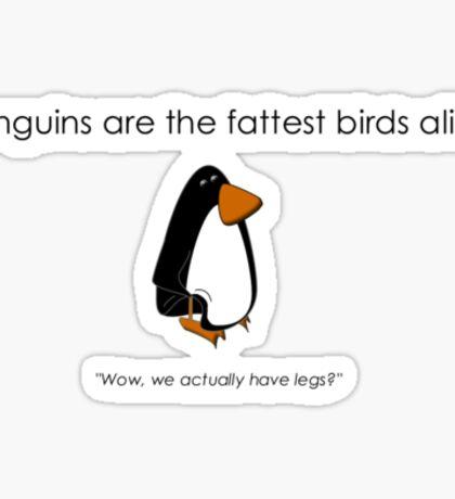 Fat Bird Sticker