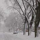 Winter Wonderland by MiLa