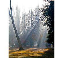 Autumn Morn. Photographic Print