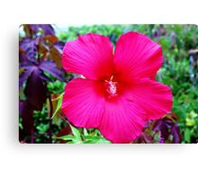 Big And Proud Canvas Print