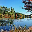 Autumn at Lake Monomonac by Rebecca Bryson
