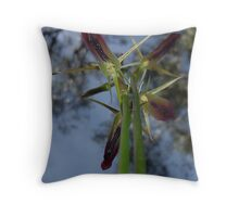 "Large Tongue Orchid ""Cryptostylis subulata"" #1 Throw Pillow"
