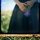 a journey through the viewfinder by aglaia b
