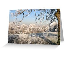 A frosty day in Abbey Fields, Kenilworth, UK. No. 1. Greeting Card