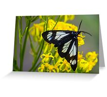Police Car Moth Greeting Card